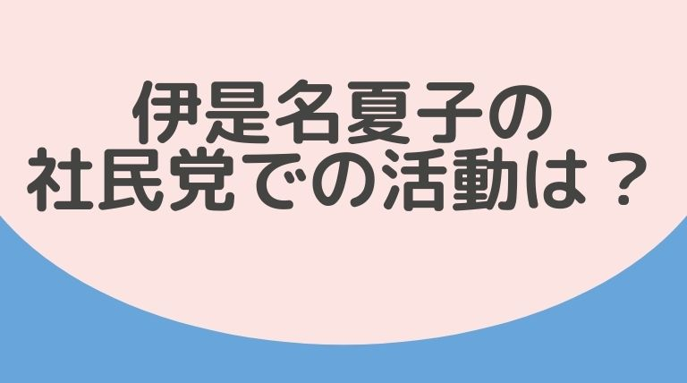 伊是名夏子の社民党での活動は?クレームはバリアフリー法の改正が目的!?