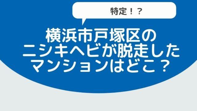 【特定!?】横浜市戸塚区のニシキヘビが脱走したマンションはどこ?こども公園も近くにあってヤバイ!-3